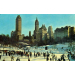Winter in central park New York DR 70345-B  st brooklyn 1966